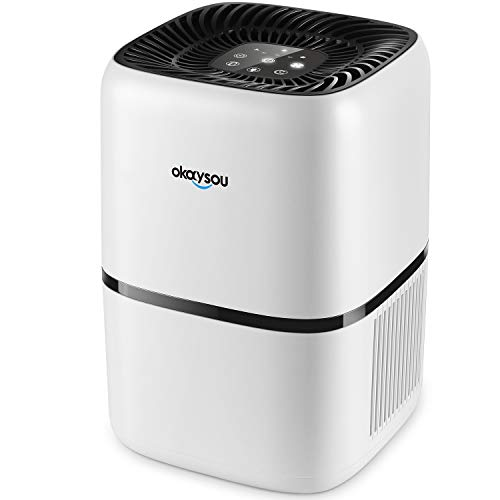 Highest Rated HEPA Air Purifiers