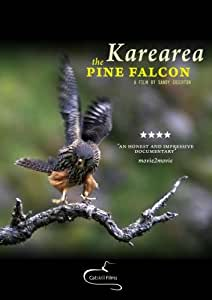 Karearea: the pine falcon[NON-US FORMAT, PAL]