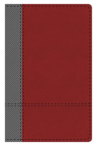 The KJV Study Bible Student Edition--Indexed (Gray/Maroon) (King James Bible) PDF ePub fb2 book