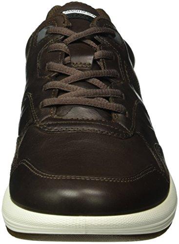 Ecco Mens Cs16 Low Fashion Sneaker Coffee
