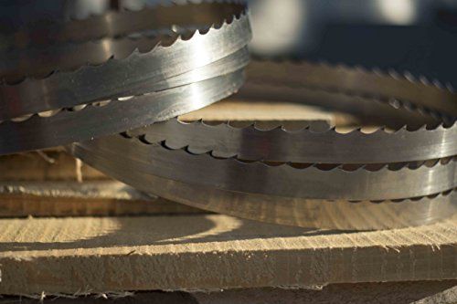 Wood-Mizer 144'' DoubleHard Sawmill Blades 10° x 0. 042'' x 1. 25'' -Box of 15 by Wood-Mizer