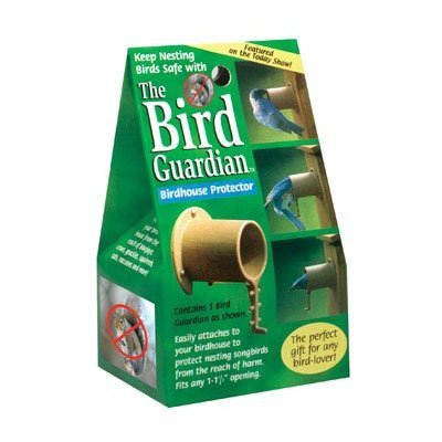 Bird Guardian Birdhouse Protector