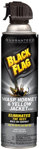 Black Flag Wasp and Hornet Aerosol Spray, 14-Ounce, 12-Pack