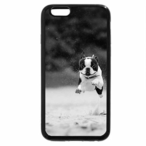 iPhone 6S Case, iPhone 6 Case (Black & White) - Runnig dog