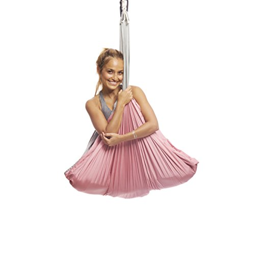 YOGABODY Yoga Trapeze [Official] - Yoga Swing/Sling/Inversion Tool, Baby Pink with Free DVD
