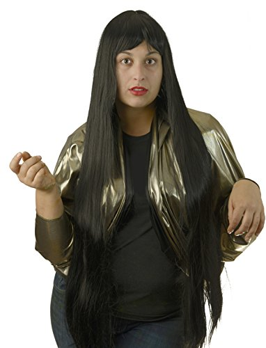 Deluxe Cher 60's Long Black Costume Wig with (60s Cher)