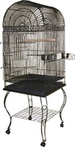 A&E CAGE COMPANY 001045 Black Economy Dome Top Bird Cage, 20 x 20 x 58 by A&E CAGE COMPANY