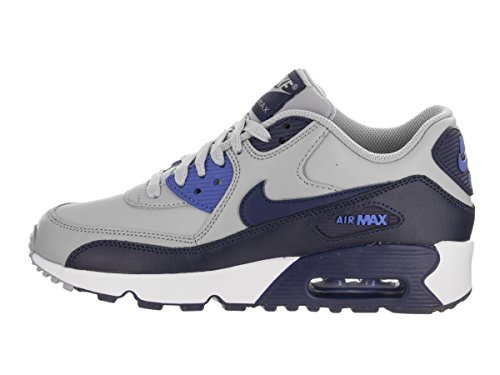 a264d37f31a Nike Air Max 90 Ltr Gs - zapatos de gimnasia Niños Gris (Wolf Grey  ...