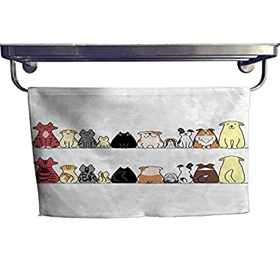 """Kids Customized Sports Towel Set Cats and Dogs Collie Calico Labrador Scottish Shorthair Tabby Shih Tzu Pet Lovers Art Print Modern Hand Towels setW 10"""" x L 10"""""""