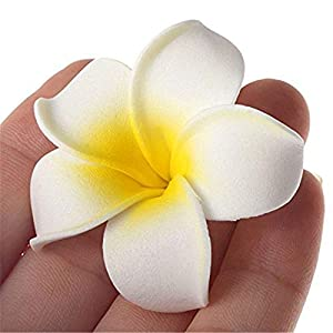 20 Pcs DIY Artificial Plumeria Hawaiian PE Foam Flower for Wedding Party Home Decoration White Yellow (3.5 Inch) 5