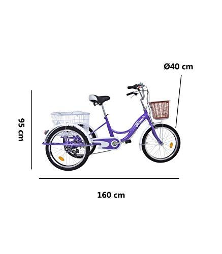 🥇 Riscko Triciclo para Adultos con Dos cestas