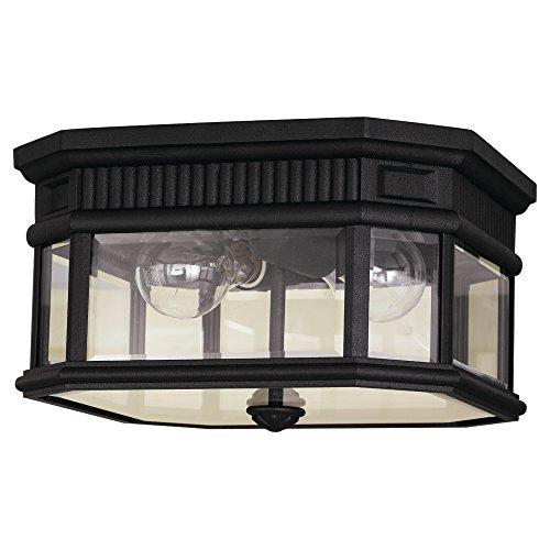 11 1/2' Ceiling Pendant (Feiss OL5413BK-LED 2-Light Ceiling Fixture)