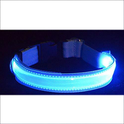 Tel Usb - PEHTEN LED Lettering Pet Collar ID Tag Night Safety Flashing Dog Cat Collars Name Tel Necklace Collar Luminous Pet Supplies USB Blue XL 43-60cm