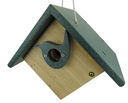 Nature Products USA Classic Green Cedar & Recycled Poly Lumber Wren Birdhouse