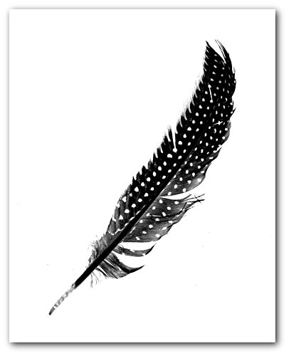 Bird feather print, Black and White Scandinavian Art, 8 x 10 Inches, Unframed