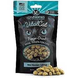 Vital Essentials Freeze-Dried Wild Alaskan Salmon Cat Treats 1.1 oz