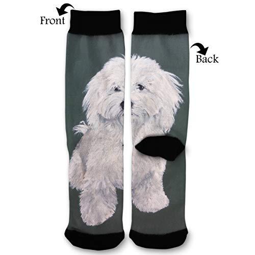 EKUIOP Socks Cute Havanese Dog Art Funny Fashion Novelty Advanced Moisture Wicking Sock for Man -