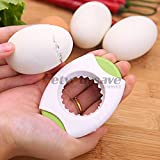 Eggshell Foam Mattress Pad Egg Shell - Modish Boiled Egg Shell Per Cutter Opener Home Essential Reliable - And Toothpaste For Removal Packing Dish Curtains Latex Full Only