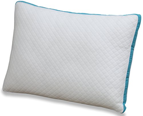 Gusset Premium Pillow (King, Single Pack) - P...