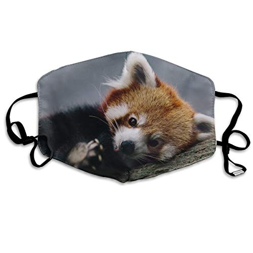 YUANSHAN Dust Mask Cute Red Panda Outdoor Mouth Mask Anti Dust Mouth Mask Man -