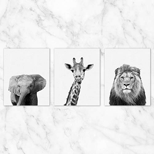 Safari Animals Wall Art - Set of 3-8x10 Prints on Linen Paper - Unframed