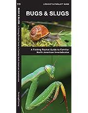 Bugs & Slugs: A Folding Pocket Guide to Familiar North American Invertebrates