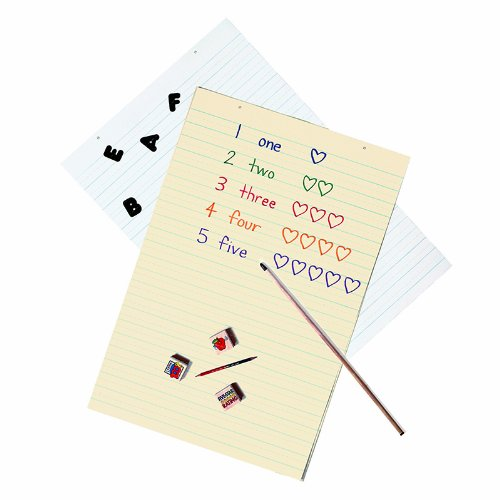 Manila Paper Tag Chart (Pacon 5163 Manila Tag Chart Paper, Ruled, 24 x 36, White, 100 Sheets)