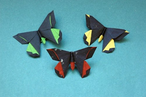 Amazon Origami Butterflies Kit Includes 2 Books 12 Fun Projects 98 Papers And Instructional DVD Great For Both Kids Adults