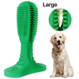 PTREWOD Dog Chew Toothbrush Dog Teeth Cleaning Toys Natural Rubber Doggy Dental Care Dog Brushing Stick for Teeth (Large, Green)