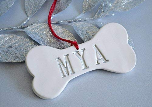 Personalized Dog Bone Christmas Ornament with Name - Gift Boxed and Ready to Give