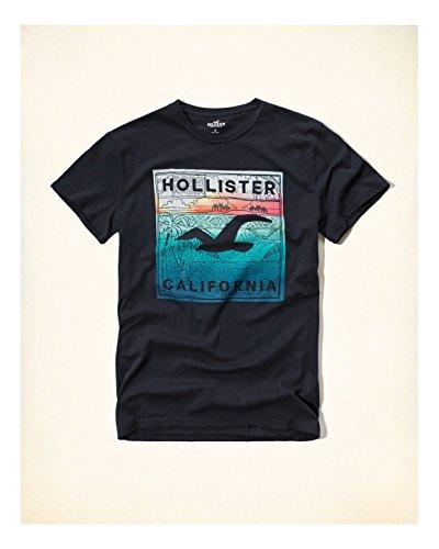 hollister-hco-logo-mens-graphic-t-shirt-tee-m-navy-27-tee