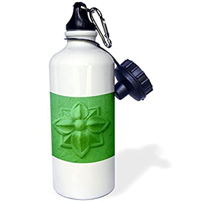 Statuear Citron vert en aluminium 567gram Bouteille d'eau 600ml Cadeau