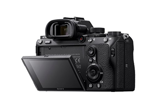 Sony a7 III Full-Frame Mirrorless Interchangeable-Lens Camera (Body) 7