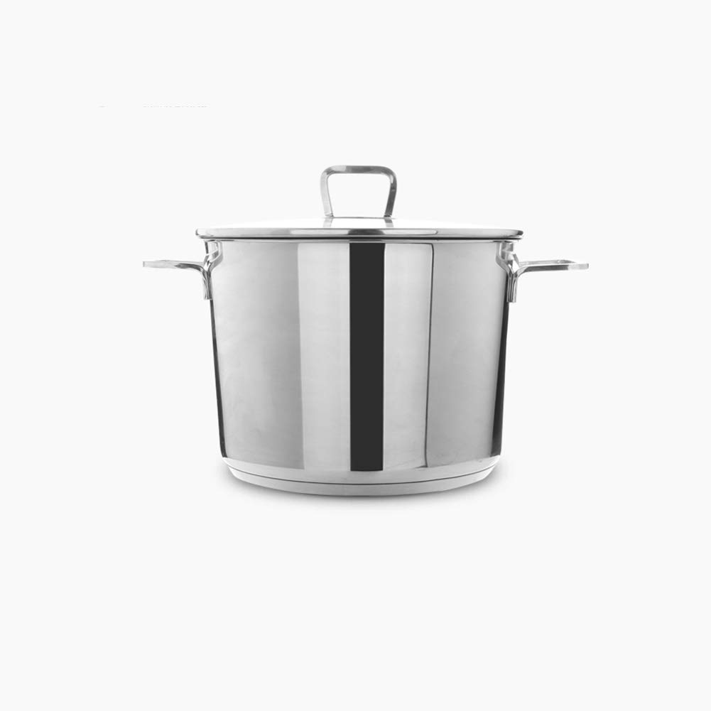 304 Strainless Steel Stew Pot 8L / 24cm Casserole with Non-stick Coating, Versatile Saucepan with Tempered Glass Lid