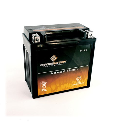 Honda Tiger - YTX14-BS High Performance - Maintenance Free - Sealed AGM Motorcycle Battery