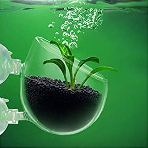 Aquarium Tank Aquatic Plants glass Landscape Cup Cultivation Basin Mini Polka Aquatic Planting Pot For Aquarium Fish Tank:Tranparent, M