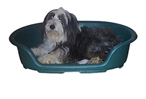 HPB 22  56cms x 36cms x 17cms Thermostatically Controlled Heated Dog Bed Provides the Ultimate in Animal Heating (HPB 22  56cms x 36cms x 17cms)