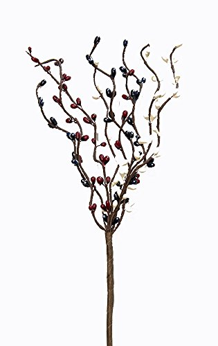 CWI Gifts 6-Piece 9-Branch Pip Berry Pick Set, 12-Inch, Country Mix ()