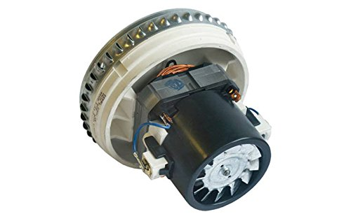 Rowenta RU01Rowenta Vorace Motor-rs-ru3963