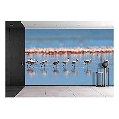 Flock of Flamingos Wading in The Shallow Lagoon Water, Classic Artwork, Unbelievable Creative Design