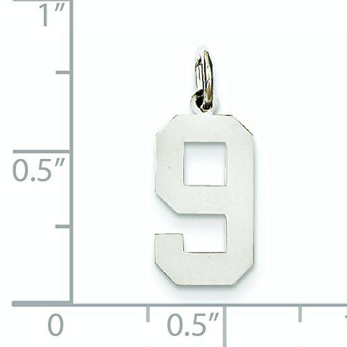 Or blanc poli 14 carats-Medium-Breloque chiffre 9 JewelryWeb
