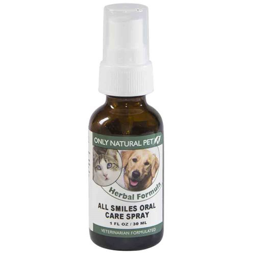 Canine Oral Care - 2