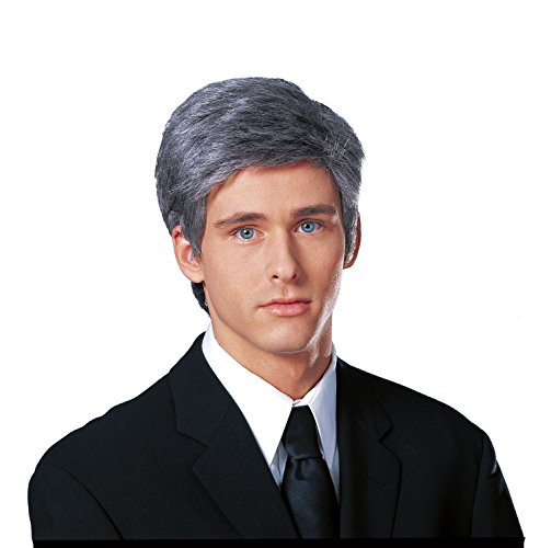 Costume Culture Men's Commander In Chief Wig, Grey, One -