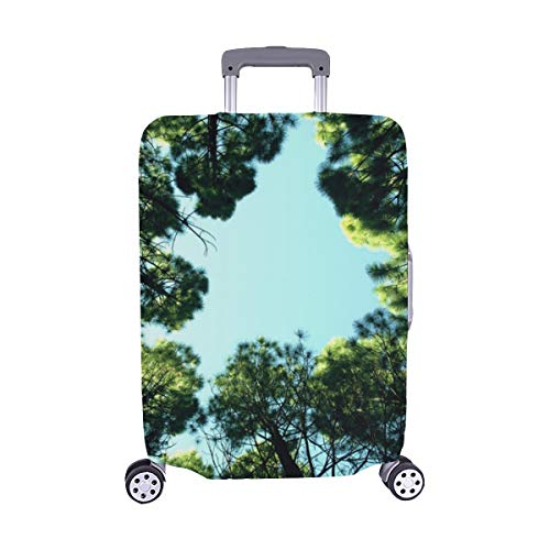 (Life Of Pix Free Stock Photos Trees Sky Forest Mik Pattern Spandex Trolley Case Travel Luggage Protector Suitcase Cover 28.5 X 20.5 Inch)
