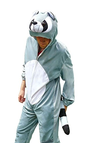 Homemade Plus Size Costumes Women (Fantasy World Raccoon Costume Halloween f. Men and Women, Size: L/ 12-14, J21)