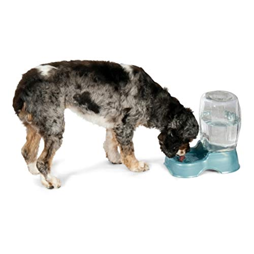 Petmate Pet Cafe Waterer Cat and Dog Water Dispenser 4 Sizes, Pearl White