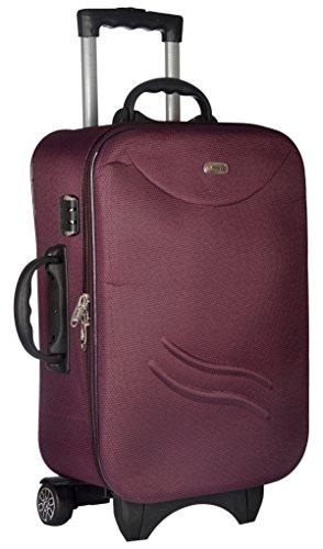 TREKKER Polyester 50 cms Purple Softsided Cabin Luggage  TTB STD20 PL