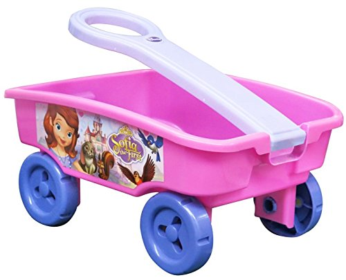 Sofia the First Disney Becoming A Princess Wagon Mountain Wagon