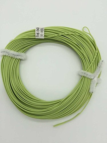 100FT Weight Forward Floating (4F,5F,6F,7F,8F) Fly Fishing Lines Orange, Blue, Yellow,Green (green, WF-6F)