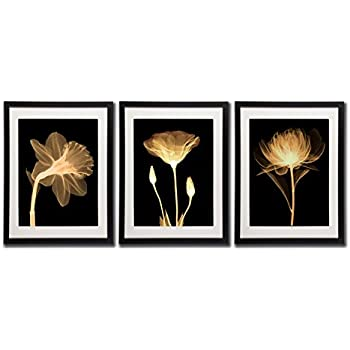 Amazon.com: Black White And Gold Wall Art Canvas Prints Decor Framed ...